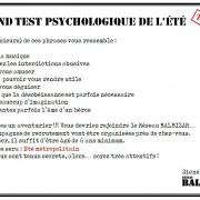 Le-test-de-lété-12